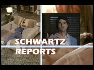 SchwartzReports1